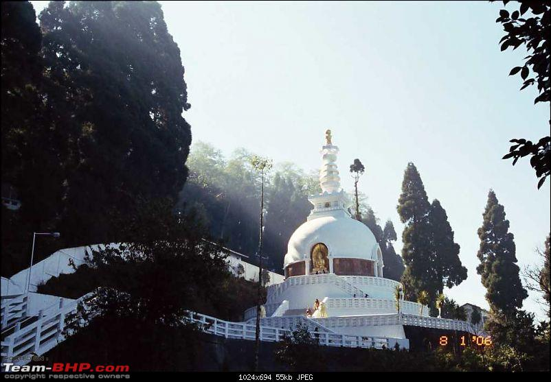 An incredible journey of a lifetime to Bhutan, Kalimpong, Darjeeling and Gangtok!-sun-rays-filtering-through-trees.jpg