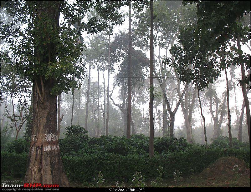 Horanaadu, Sringeri, Udupi, St Mary's Island, Dharmasthala, Subramanya - Road Trip-img_0001.jpg