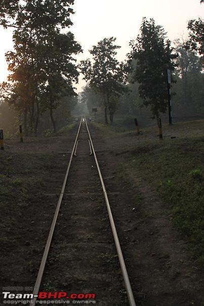 Name:  tracks.jpg Views: 1131 Size:  127.1 KB
