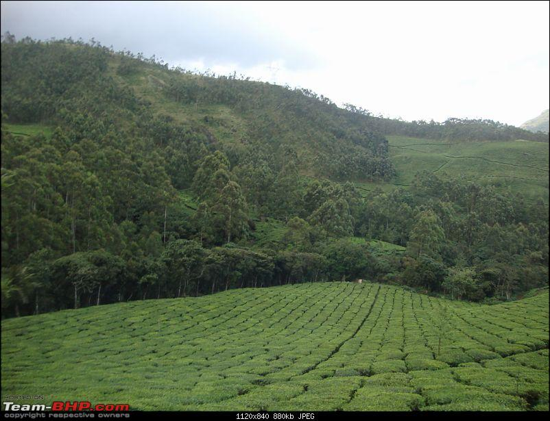 Hyd - Munnar (A Well Planned Trip Went Bad, But Still Enjoyed)-dsc00711tbhp.jpg