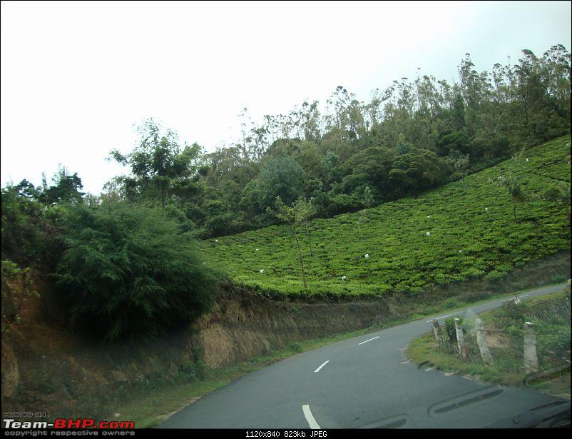 Hyd - Munnar (A Well Planned Trip Went Bad, But Still Enjoyed)-dsc00872tbhp.jpg