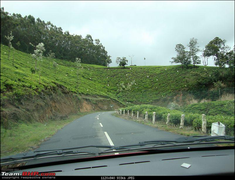 Hyd - Munnar (A Well Planned Trip Went Bad, But Still Enjoyed)-dsc00876tbhp.jpg