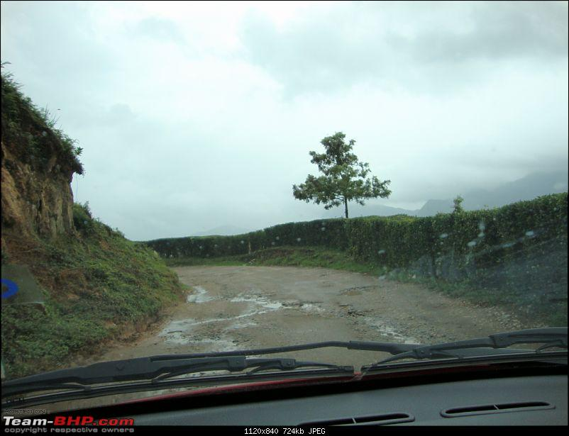 Hyd - Munnar (A Well Planned Trip Went Bad, But Still Enjoyed)-dsc00896tbhp.jpg