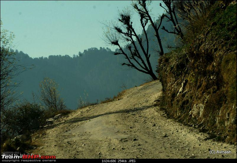 "Himachal Pradesh : ""The Great Hunt for Snowfall"" but found just snow-dsc_0896.jpg"