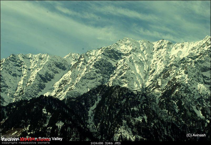 "Himachal Pradesh : ""The Great Hunt for Snowfall"" but found just snow-dsc_1711.jpg"