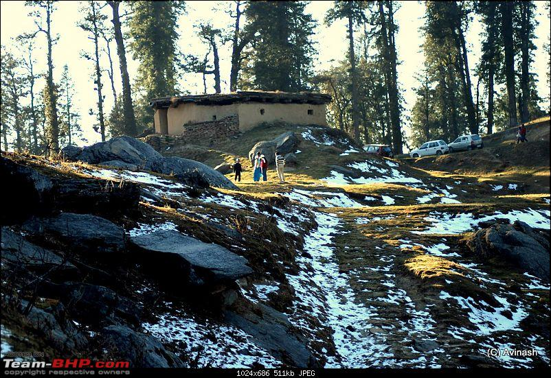 """Himachal Pradesh : """"The Great Hunt for Snowfall"""" but found just snow-dsc_0552.jpg"""
