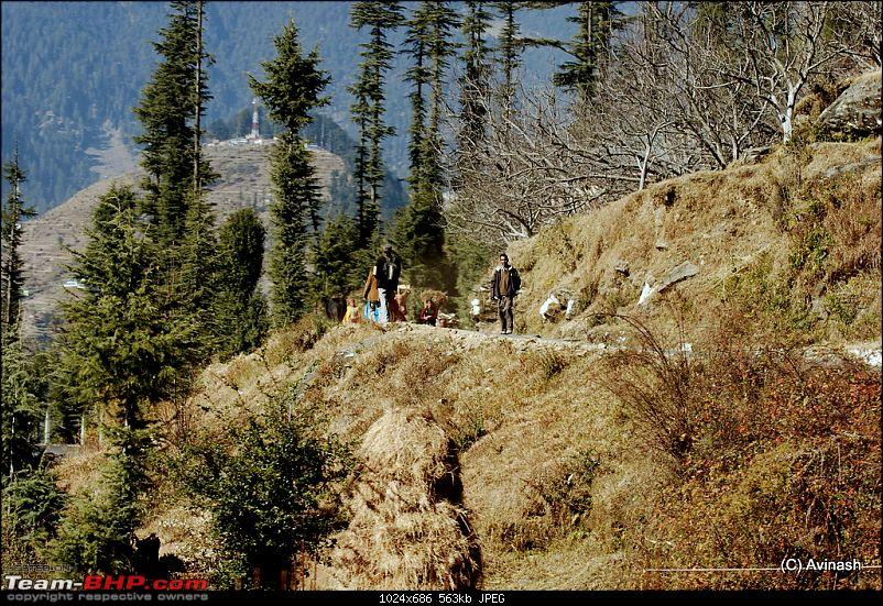 """Himachal Pradesh : """"The Great Hunt for Snowfall"""" but found just snow-dsc_0867.jpg"""