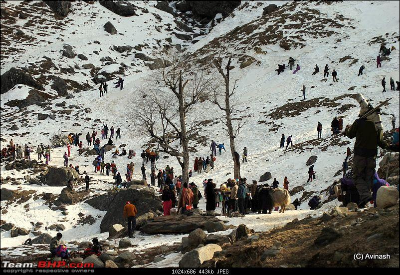 """Himachal Pradesh : """"The Great Hunt for Snowfall"""" but found just snow-dsc_1718.jpg"""