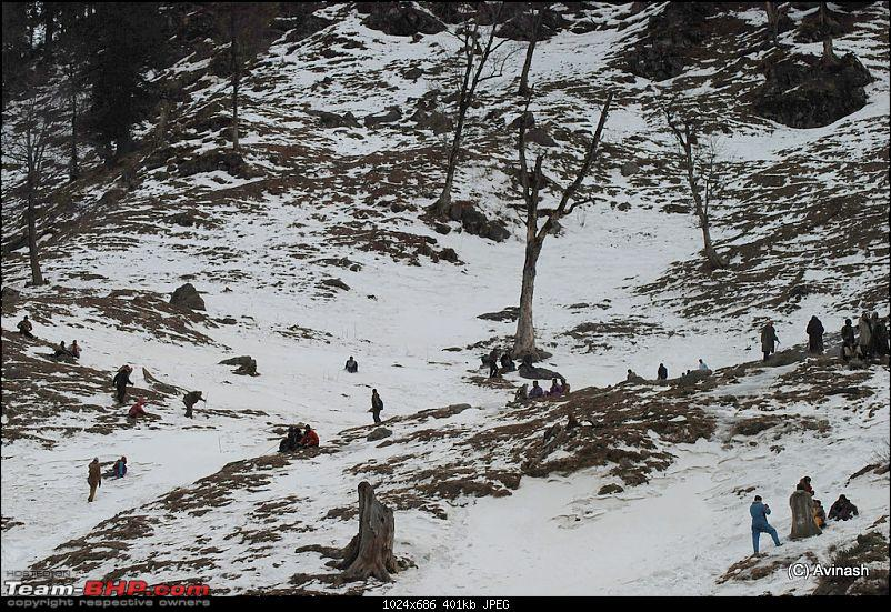 """Himachal Pradesh : """"The Great Hunt for Snowfall"""" but found just snow-dsc_1773.jpg"""