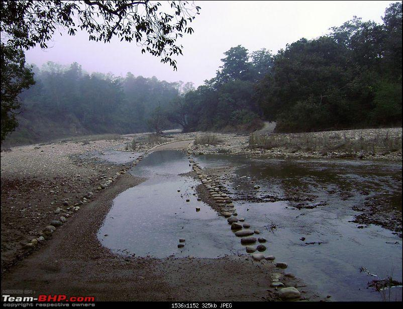 Trip to Corbett and Pangot. Did not spot the tiger though-dsc00986-copy.jpg