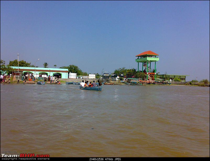 A journey to the world's second largest mangrove forest.-pichavaram44.jpg