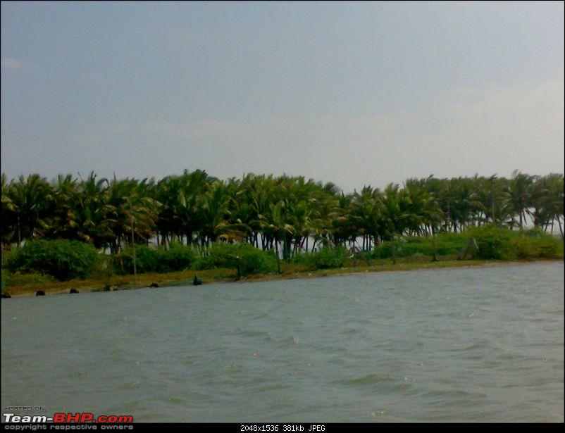 A journey to the world's second largest mangrove forest.-pichavaram5.jpg