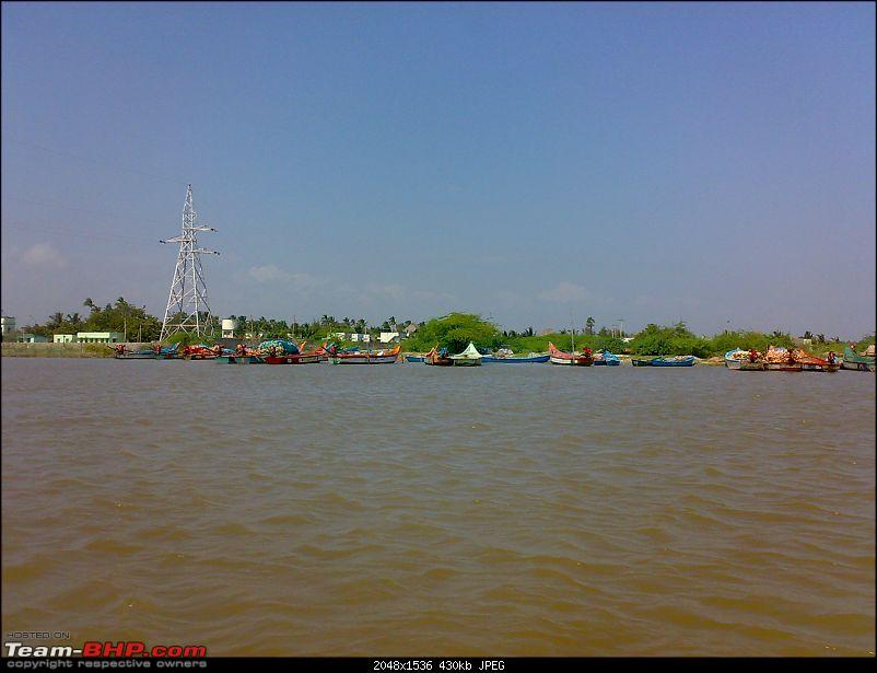 A journey to the world's second largest mangrove forest.-pichavaram41.jpg