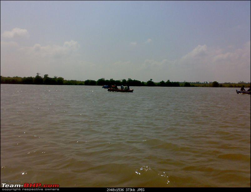 A journey to the world's second largest mangrove forest.-pichavaram43.jpg