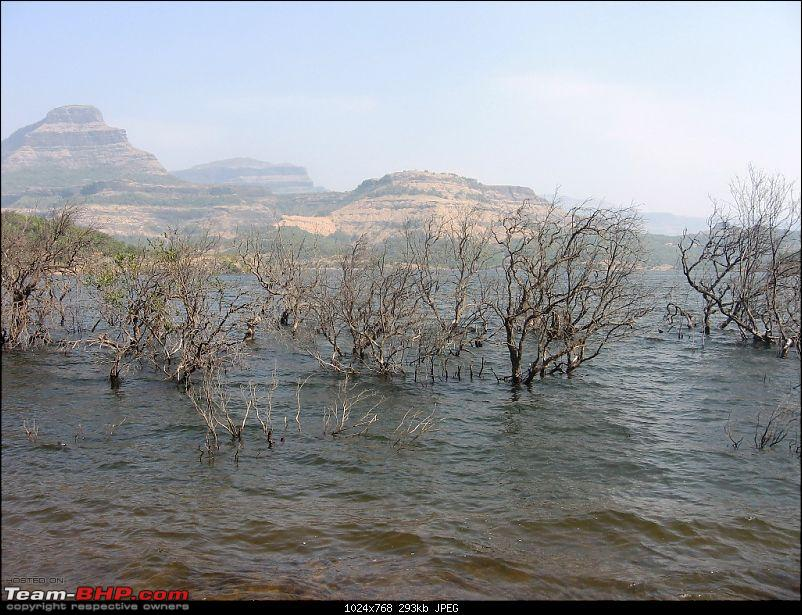 Bhandardara - Weekend getaway on Scorpio-img_2844.jpg