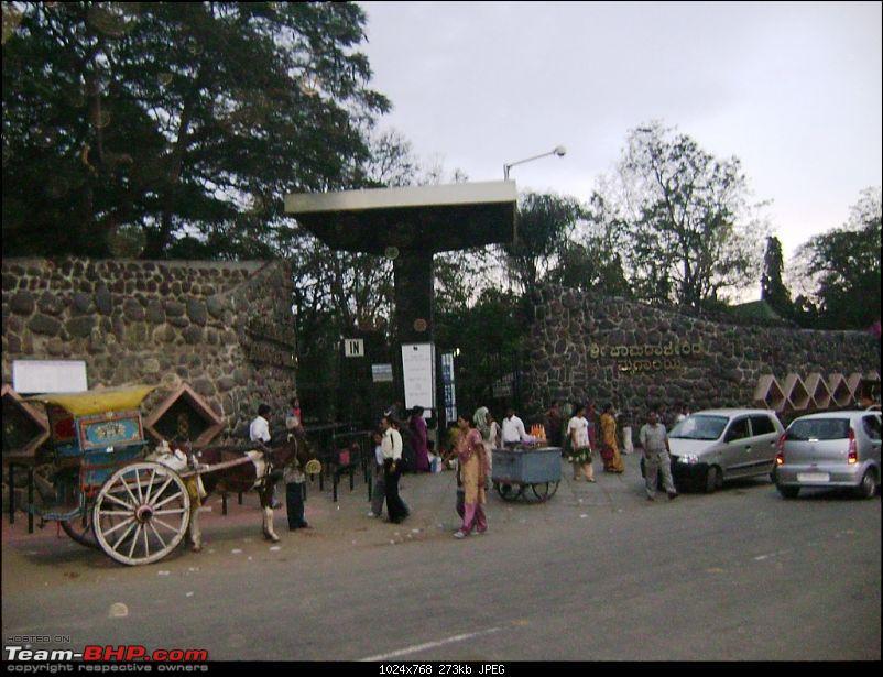 Story of a Vacation (:-))-mysore-zoo-1.jpg