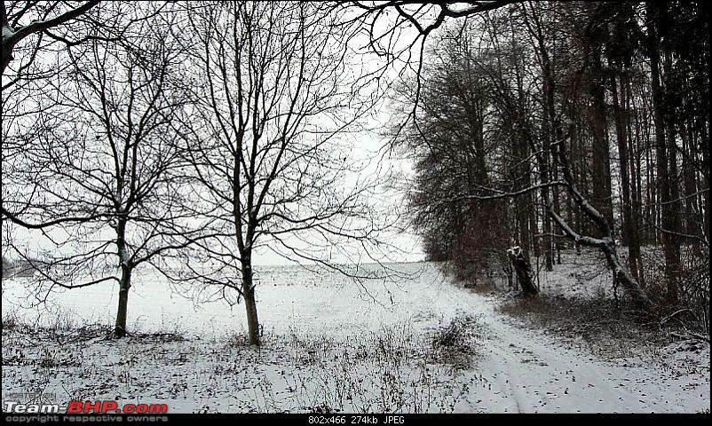 YetiBlog® - Snow, Germany and a Rather Blocked Nose-sam2.jpg