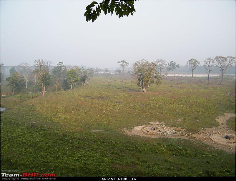 Kolkata to Dooars- A memorable road trip-pic-184.jpg