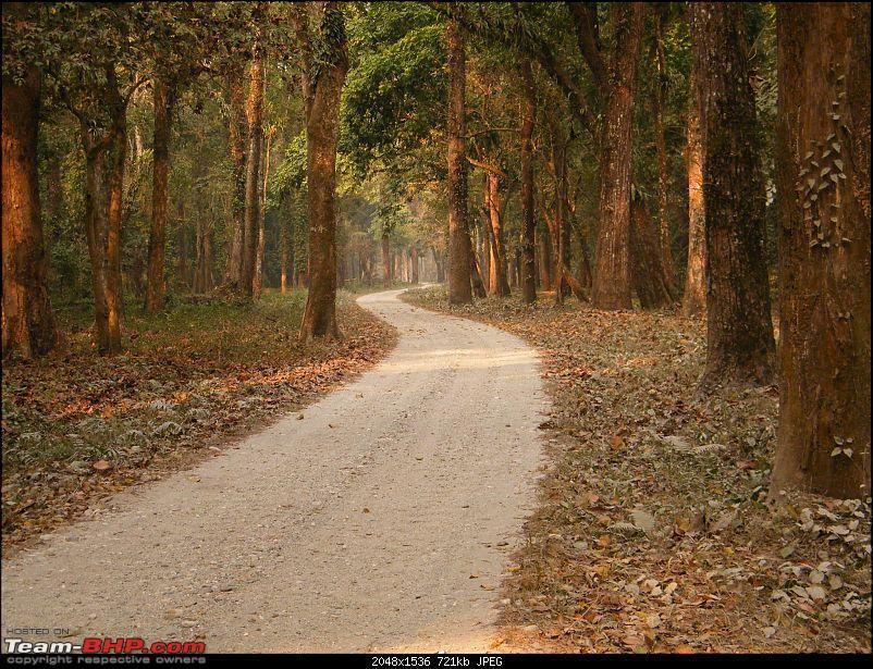 Kolkata to Dooars- A memorable road trip-pic-200.jpg