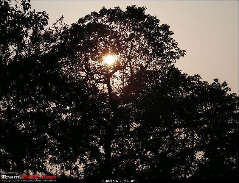 Kolkata to Dooars- A memorable road trip-pic-258.jpg