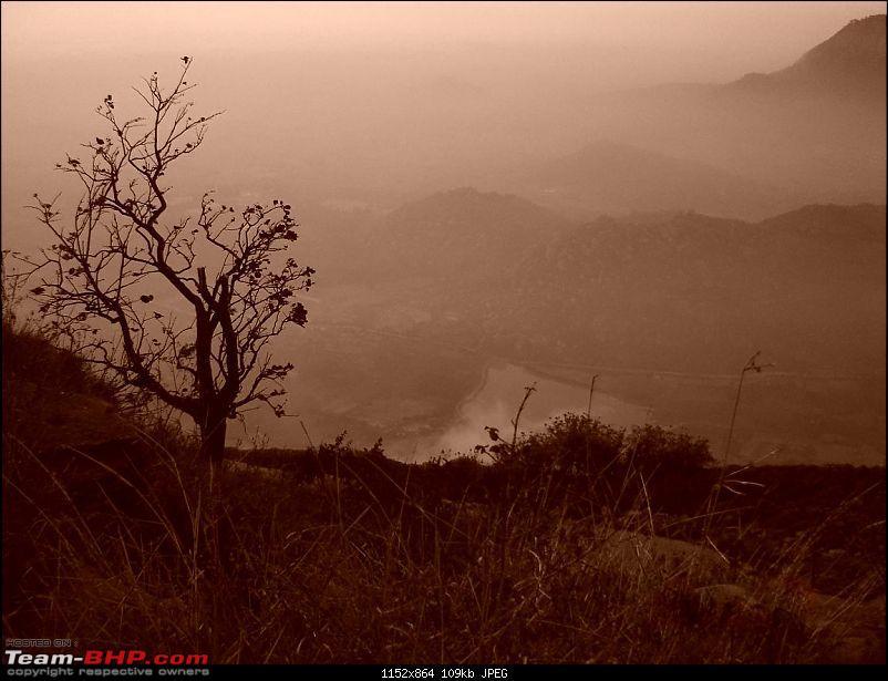 Trek to the clouds : SKANDAGIRI-dsc05283.jpg