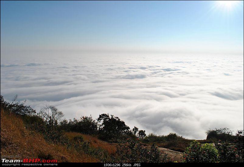 Trek to the clouds : SKANDAGIRI-dsc_0134.jpg