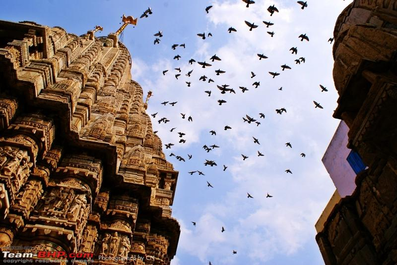Name:  22 Jagdish Temple  Birds.JPG