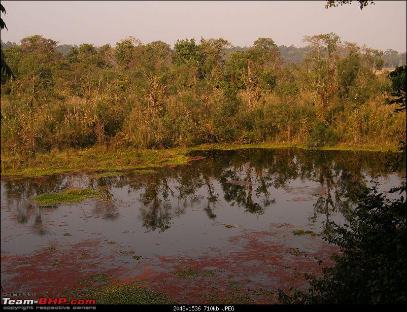 Kolkata to Dooars- A memorable road trip-pic-441.jpg