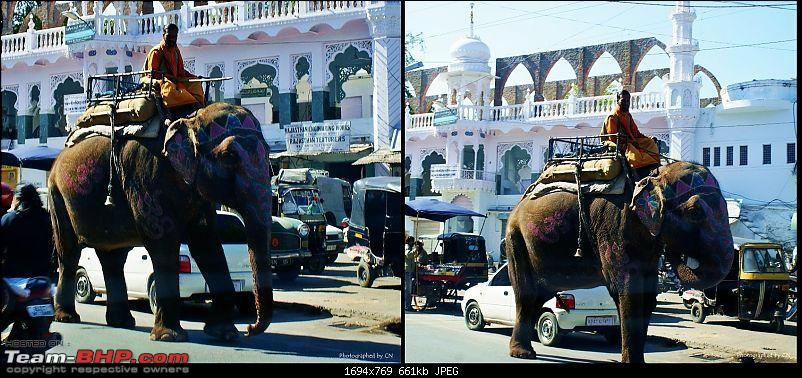 An Incredible Road Trip of a Lifetime to Udaipur, The Most Romantic City in the World-9-a_decorated_elephant.jpg