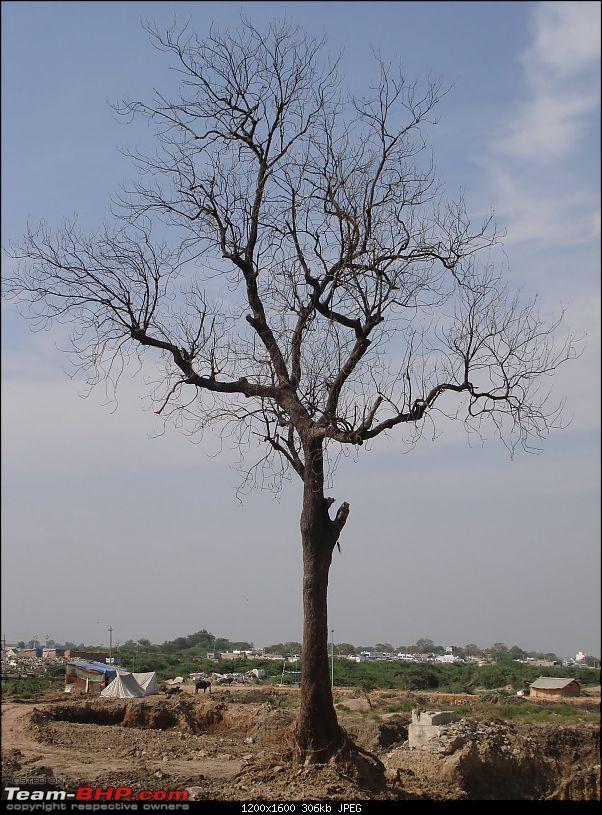 Hyderabad – Mantralayam a day trip.-lone-witness-distruction.jpg