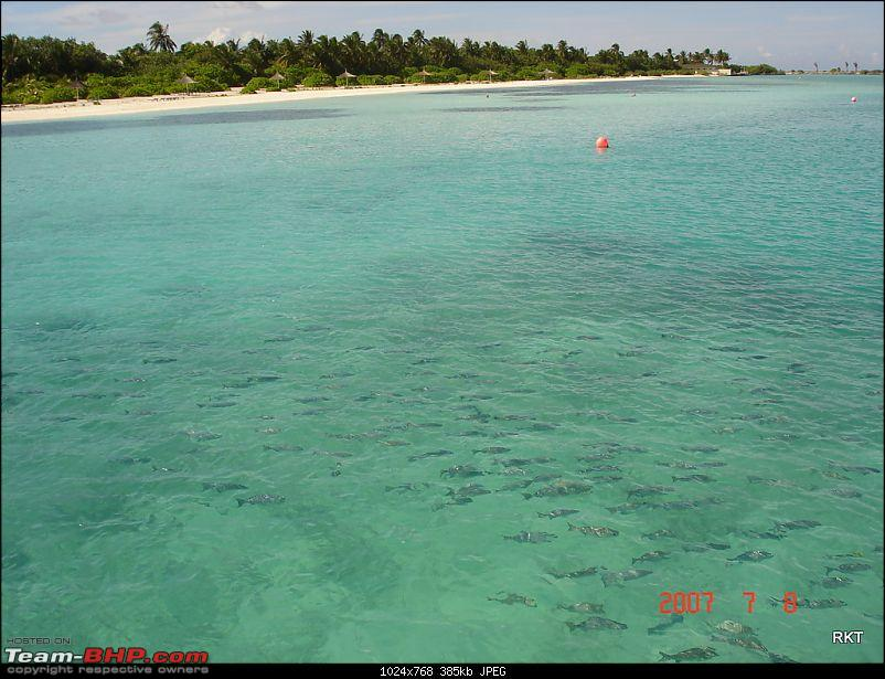 Maldives - A Paradise on the brink of extinction-dsc07528.jpg