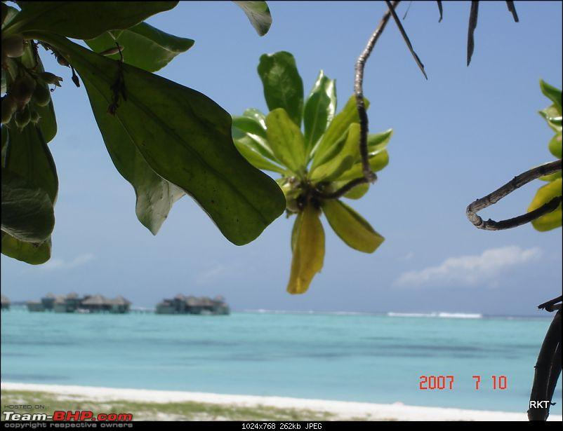 Maldives - A Paradise on the brink of extinction-dsc07619.jpg