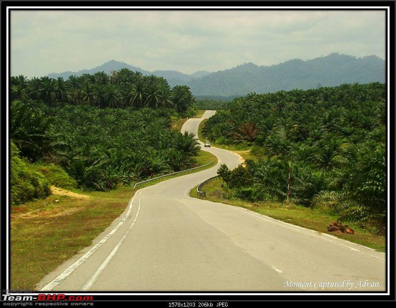 Taman Negara - Getting Closer to Mother Nature-9.-road_ahead.jpg