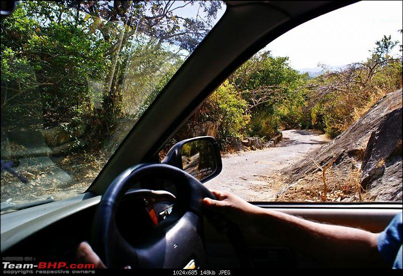 An Incredible Road Trip of a Lifetime to Udaipur, The Most Romantic City in the World-22-jungle_trail-what_a_sharp_turn.jpg
