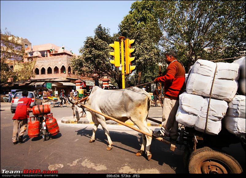 Delhi in 6hrs..a photo collection!-img_7228c.jpg
