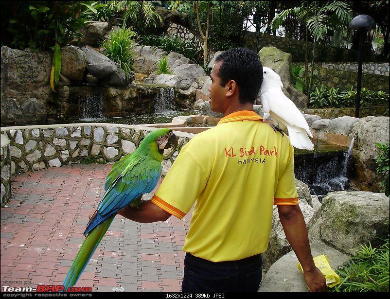 15 RAJABABUes in Malaysia and Singapore-132.jpg