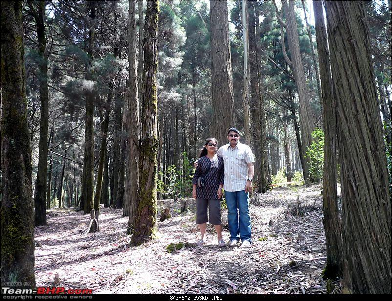 'Xing'ing around ! - Masinagudi, Ooty and Coonoor.-4.jpg</a><br /> <br /> <br /> Next stop was the 'Tea Factory &amp; Museum' on the way back towards Ooty. The place offers a good view of the entire Ooty town spread out below...<br /> <br /> <a href=