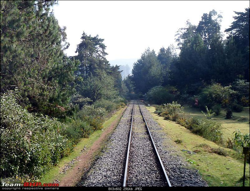 'Xing'ing around ! - Masinagudi, Ooty and Coonoor.-23.jpg