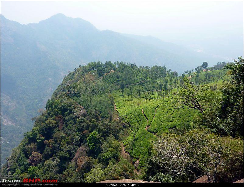 'Xing'ing around ! - Masinagudi, Ooty and Coonoor.-24.jpg
