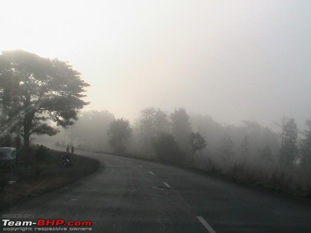 Name:  Early morning fog.jpg