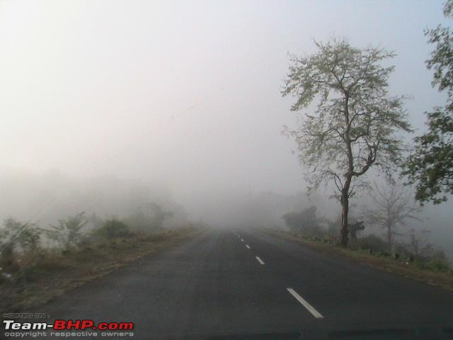 Name:  Early morning fog 1.jpg