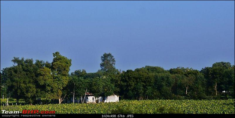 An Incredible Road Trip of a Lifetime to Udaipur, The Most Romantic City in the World-12-farmland_near_expressway.jpg