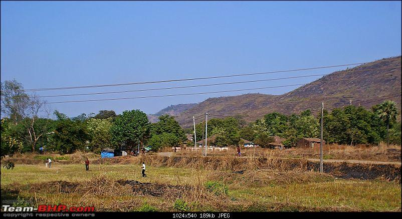 An Incredible Road Trip of a Lifetime to Udaipur, The Most Romantic City in the World-31-field_cricket.jpg