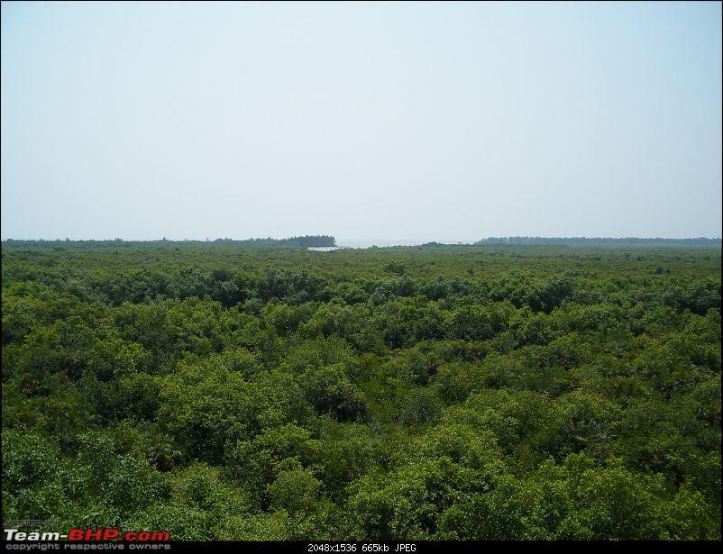 A Weekend trip to Bakkhali & Henry Island-dscf1656.jpg