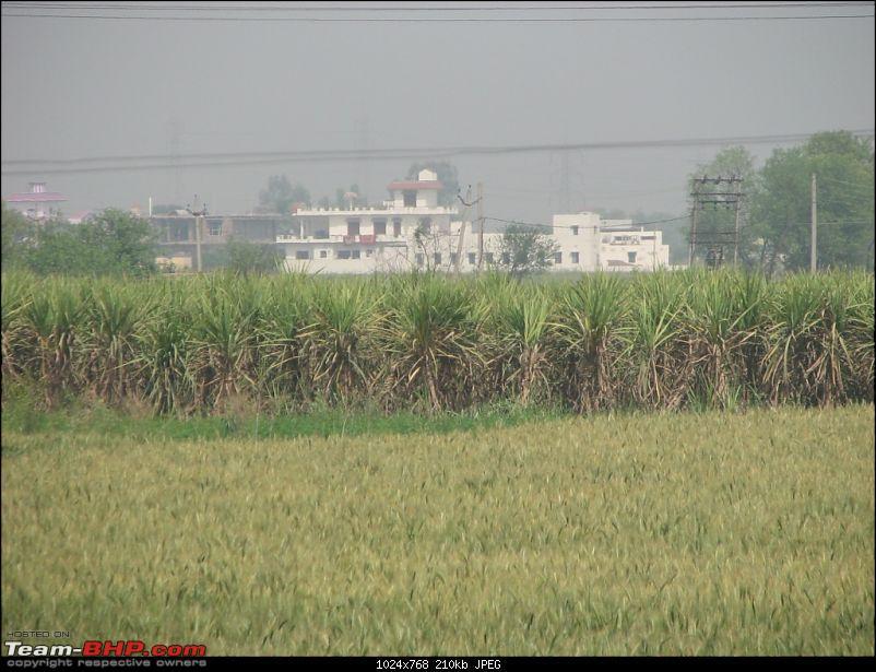 """Superb """"Punjab (Punj means 5 and Aab means water)"""" Noida, Chandigarh, Amritsar, Atari-punjab2010-141.jpg"""