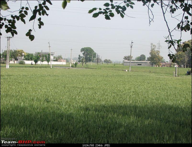 """Superb """"Punjab (Punj means 5 and Aab means water)"""" Noida, Chandigarh, Amritsar, Atari-punjab2010-143.jpg"""