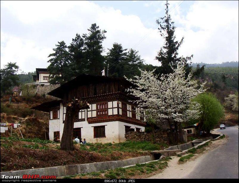 Gross Travelling Happiness - Bhutan, Sikkim, Darjeeling-dsc08763k80.jpg