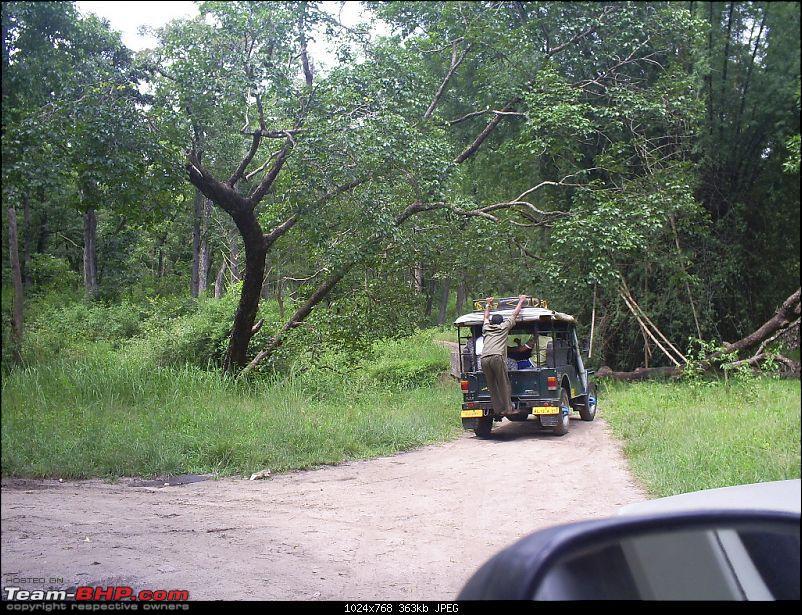 My Tri-State Roadtrip - The highlights.-roadtrip-183.jpg
