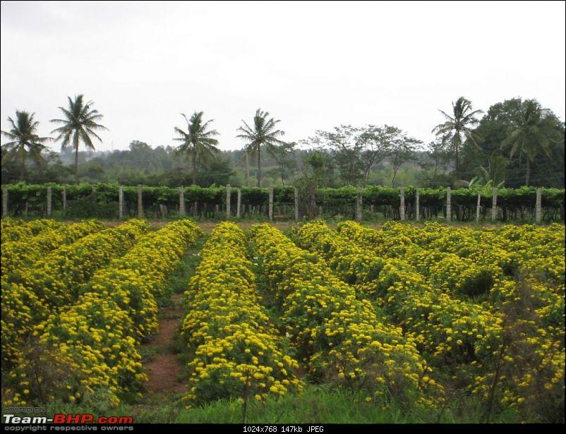 One day Trips - Muthyala Madavu (Pearl Valley)-img_3038.jpg