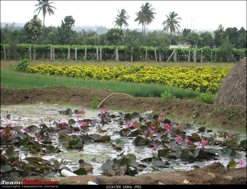 One day Trips - Muthyala Madavu (Pearl Valley)-img_3042.jpg